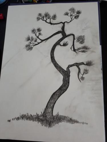 Un arbre en dessin